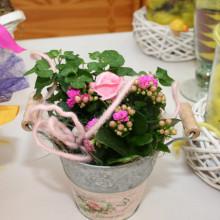 Dekorierte Topfpflanzen