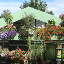 Garten- und Beetpflanzen